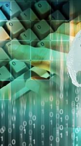 consulenza informatica e nuove tecnologie Schio (VI)